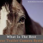 best horse trailer camera system