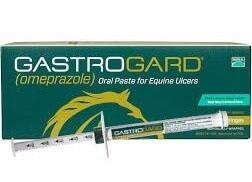 gastrogard for horses